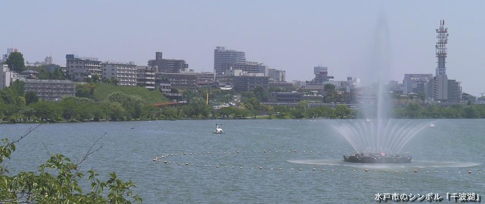 千波湖の画像2